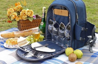 Best Picnic Backpacks You Can Buy in 2020 With Reviews
